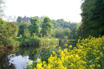 Summer along the River Lagan, Belfast